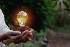 Hand of person holding light bulb for idea or success and solar. Energy concept Royalty Free Stock Photos