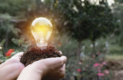 Hand of person holding light bulb for idea or success and solar. Energy concept Royalty Free Stock Photography