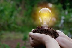 Hand of person holding light bulb for idea or success and solar. Energy concept Royalty Free Stock Photo