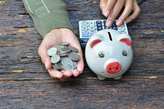 Hand of person holding stack coins and piggy bank on old bark ba Stock Image
