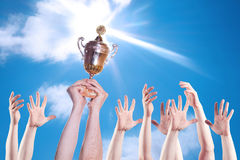 Hand of the person with a sports cup Stock Images