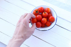 Hand pick cherry tomatoes Royalty Free Stock Photography