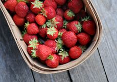 Hand picked strawberries in wooden basket. On wood background Stock Images