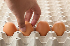 Hand picking egg from egg tray Stock Image