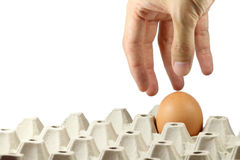 Hand picking egg in paper tray Stock Photo