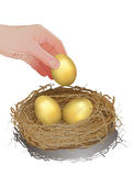 Hand picking up gold egg Royalty Free Stock Image