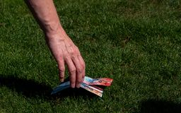 Hand picking up money from the ground. swiss currency. grass ground royalty free stock images
