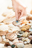 Hand picking up shell with black pearl from sea. Closeup photo of hand picking up shell with black pearl from sea Royalty Free Stock Photo