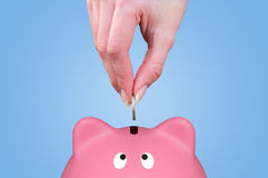 Hand and piggy bank Stock Photo