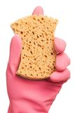 Hand in a pink glove holding sponge Stock Images