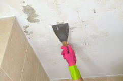 Hand in Pink Glove with Plaster Spatula Royalty Free Stock Photography