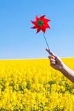 Hand with pinwheel Royalty Free Stock Photo