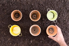 Hand placing empty pots on fresh soil Royalty Free Stock Images
