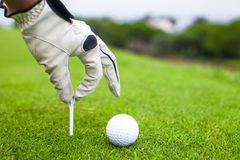 Hand placing golf-ball on tee over beautiful golf Stock Images