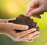 Hand planting a seed in soil. Conceptual of growth and agriculture Royalty Free Stock Images