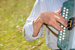 Hand play accordion. Against background of long grass vector illustration