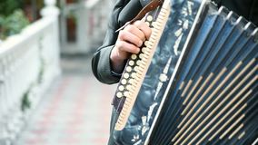 Hand playing accordions closeup stock footage