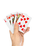 Hand with playing cards royalty free stock photos