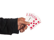 A hand with playing cards stock images