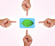 Hand pointing on green leaf button Royalty Free Stock Photos