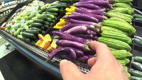 Hand pointing serial about picking carrot stock video