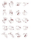Hand position. Stylized drawing of different hand position vector illustration