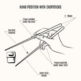Hand position with chopsticks Royalty Free Stock Images