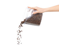 Hand pour out Fresh roasted coffee beans Royalty Free Stock Image