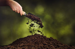 Hand pouring black soil on green plant bokeh background Royalty Free Stock Photos