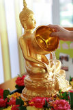 Hand pouring water on Buddha image. For worshiping and paying respect on Songkran Festival in Thailand stock images