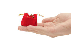 Hand with present Stock Photography