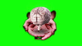 Hand presenting a spinning brain stock video