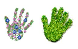 Hand print of grass, flowers and leaves Stock Image