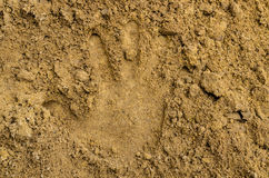 Hand print on the sand Royalty Free Stock Photo