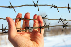 Hand of prison and sky background Royalty Free Stock Images