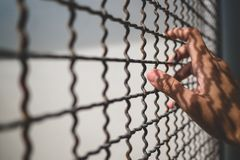 Hand of prisoner holding rustic metal fence with pattern shadow, criminal locked in jail Royalty Free Stock Photo