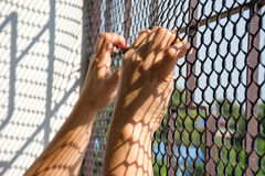 Hand of prisoner in jail Royalty Free Stock Photos