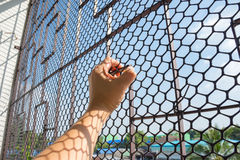 Hand of prisoner in jail Stock Images