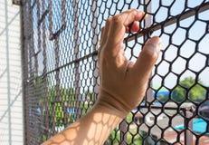 Hand of prisoner in jail Stock Photos