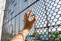 Hand of prisoner in jail. Catching mesh cage and  want to freedom Royalty Free Stock Photography