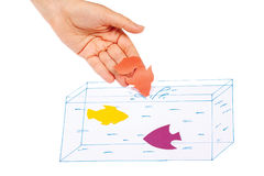 Hand produces a paper fish in the painted aquarium Royalty Free Stock Images