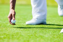 Hand of Professional Golf Player teach how to Teed Up Golf Ball Stock Photos