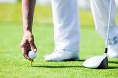 Hand of Professional Golf Player teach how to Teed Up Golf Ball Stock Image
