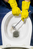 Hand in protective yellow gloves wash toilet in the toilet Royalty Free Stock Photo