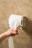 Hand pulling toilet paper roll in holder Stock Photo