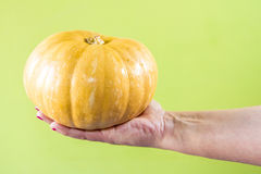 Hand with a pumpkin Royalty Free Stock Photos