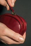 Hand with purse Stock Photography