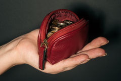 Hand with purse Royalty Free Stock Photos