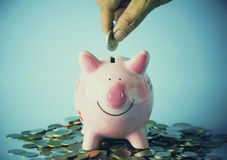 hand put  coins on piggy bank Stock Photo