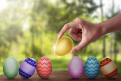 Hand put gold easter egg in row on wooden plank Stock Images